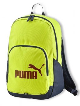 073589-11-puma-phase1